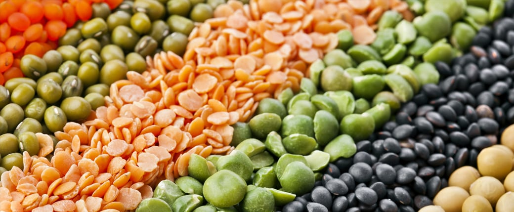 Healthy Food Ingredients (HFI) Provides Tips for Food Manufacturers