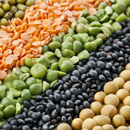 Pulses and Soybeans